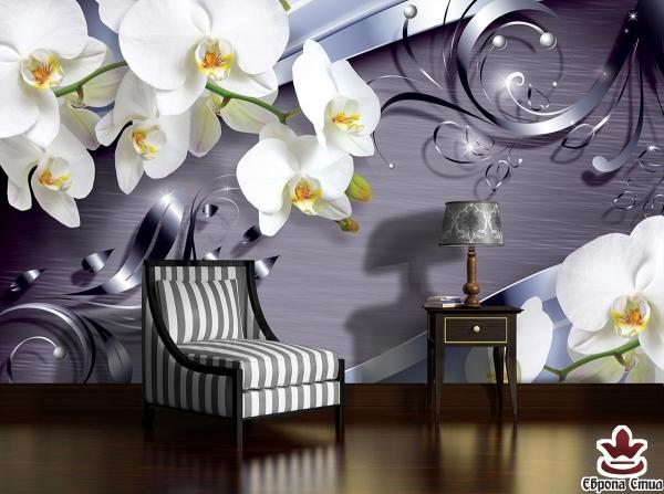 Създайте си комфортен вътрешен дизайн с помощта на фототапети за стена