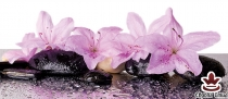 фототапет панел с розови цветя и спа камъни