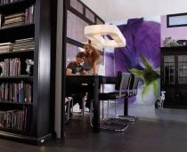фототапети с лилавa магнолия
